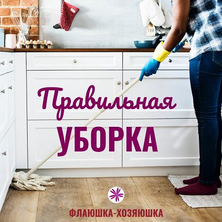 Уборка квартиры или дома будет быстрой, если знать основные правила и советы системы флайледи #флаюшка